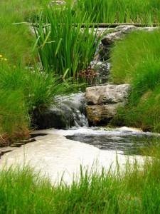 Voda a její uplatnění v zahradních prostorách